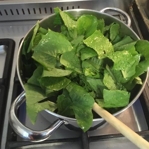 lettuce in a pan